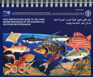 the living marine resources of the Eastern and Southern Mediterranean